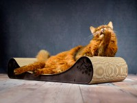 cat lounge Le Divan | handcrafted cat furniture Made in Germany