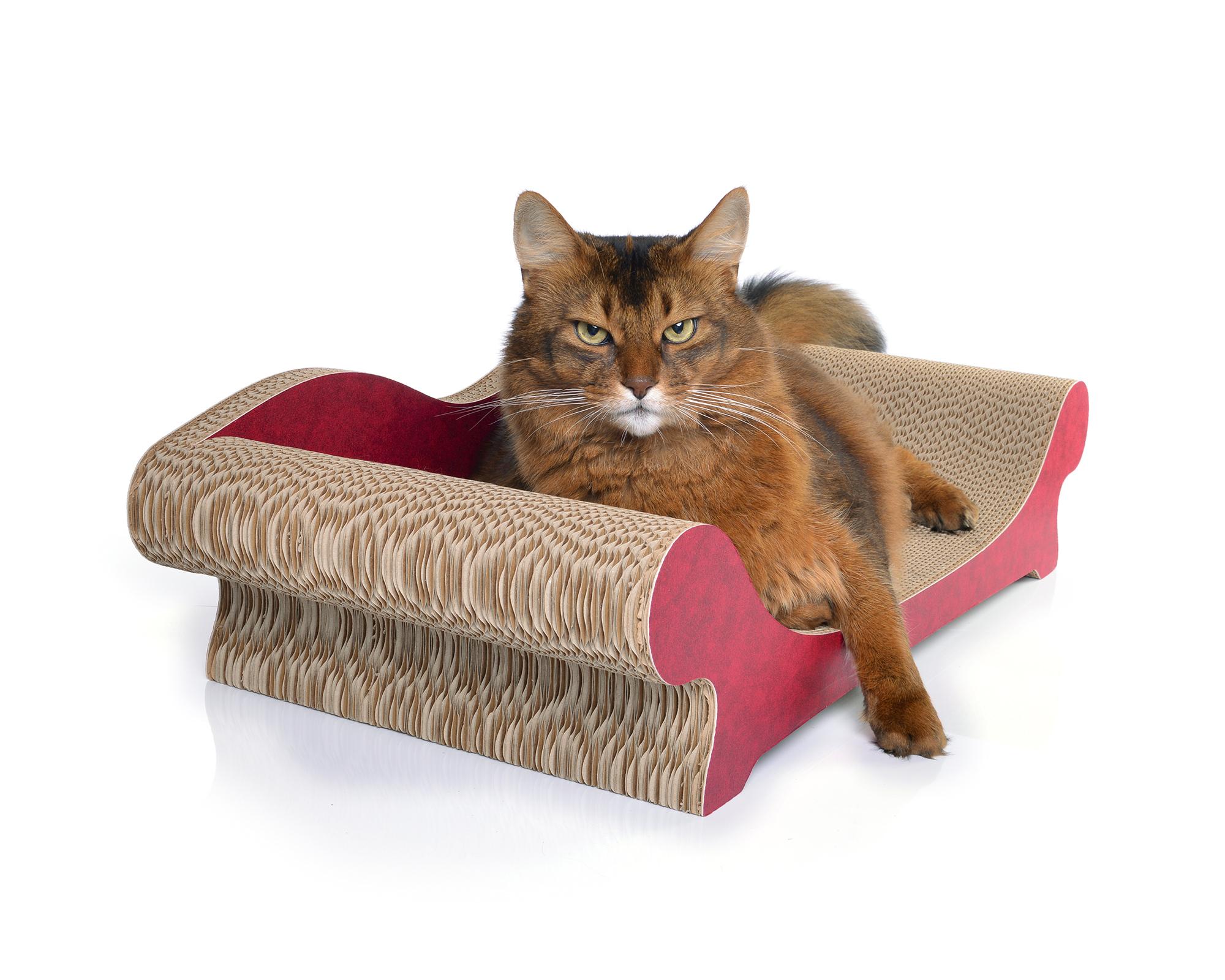Le Canapé Plus Paper-Edition | nachhaltige Produkte für Katzen
