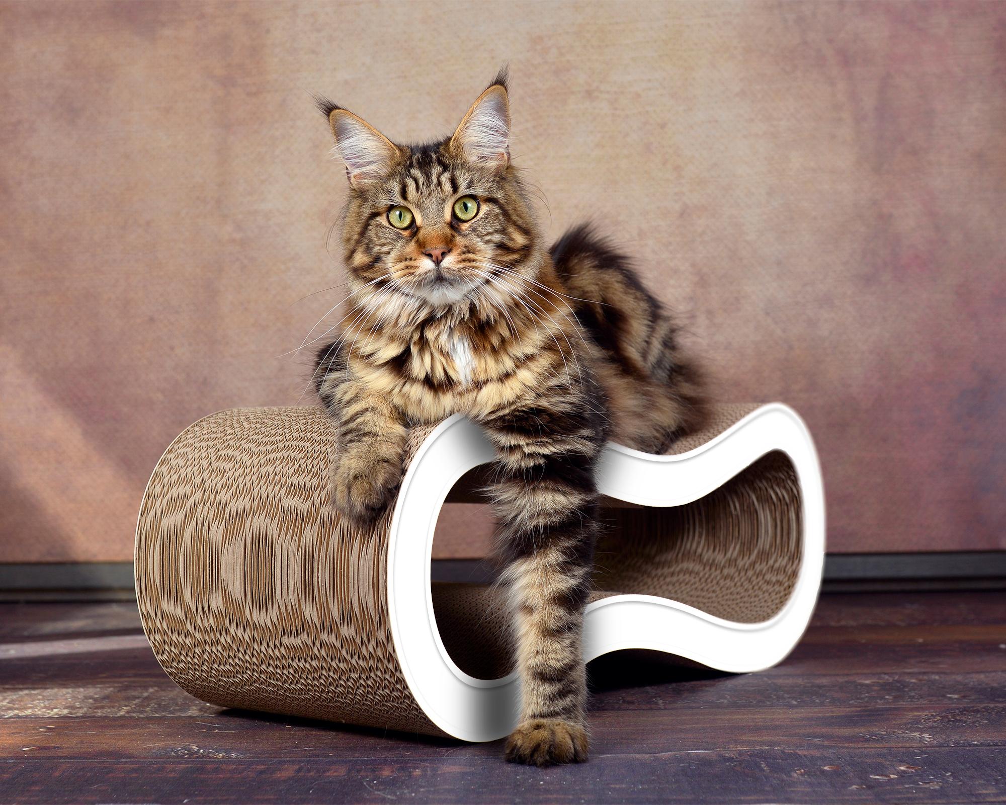 Design Kratzmöbel aus Wellpappe Singha M - Farbe: weiß