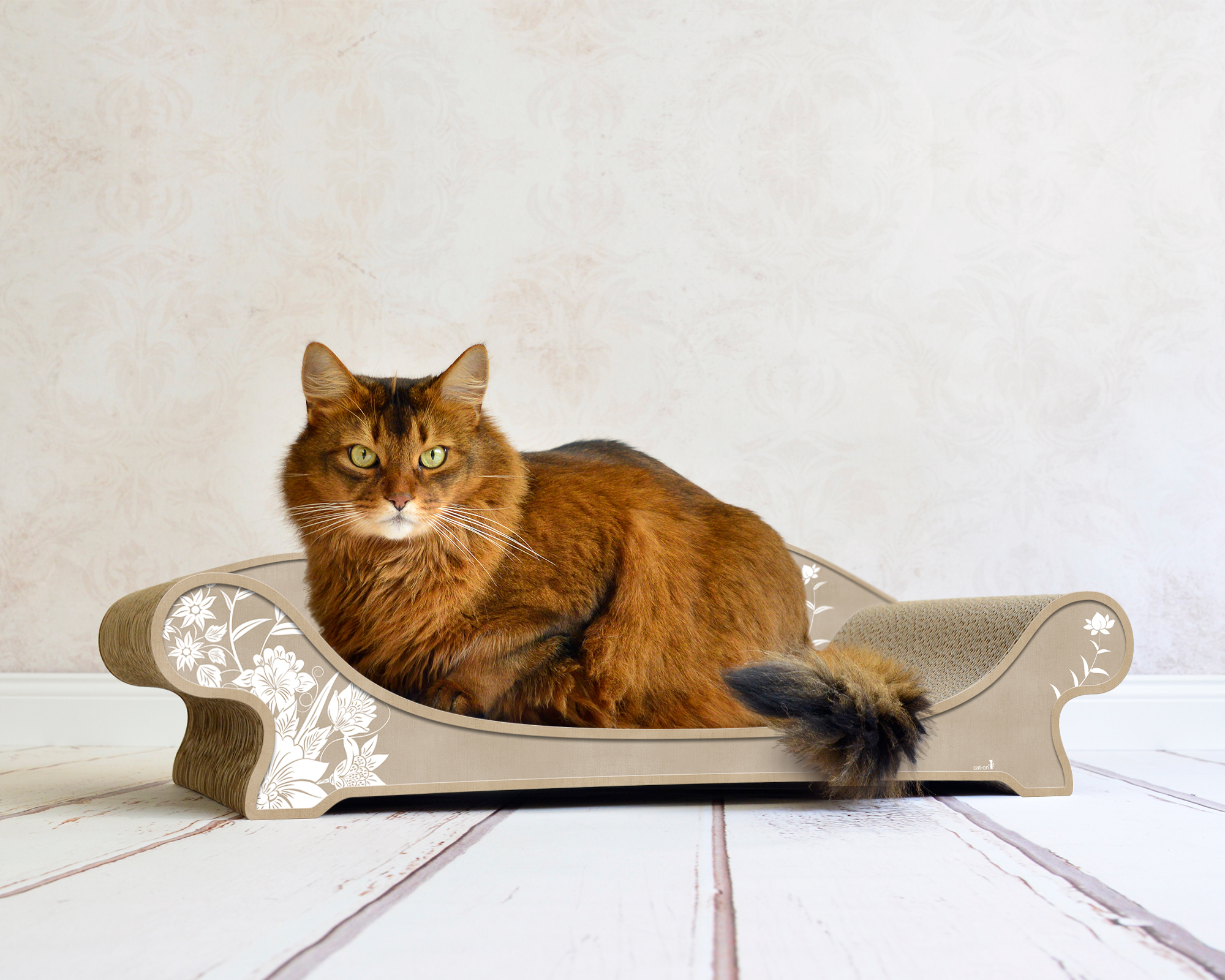 Fantastic Le Canape Plus Cat Lounge Andrewgaddart Wooden Chair Designs For Living Room Andrewgaddartcom