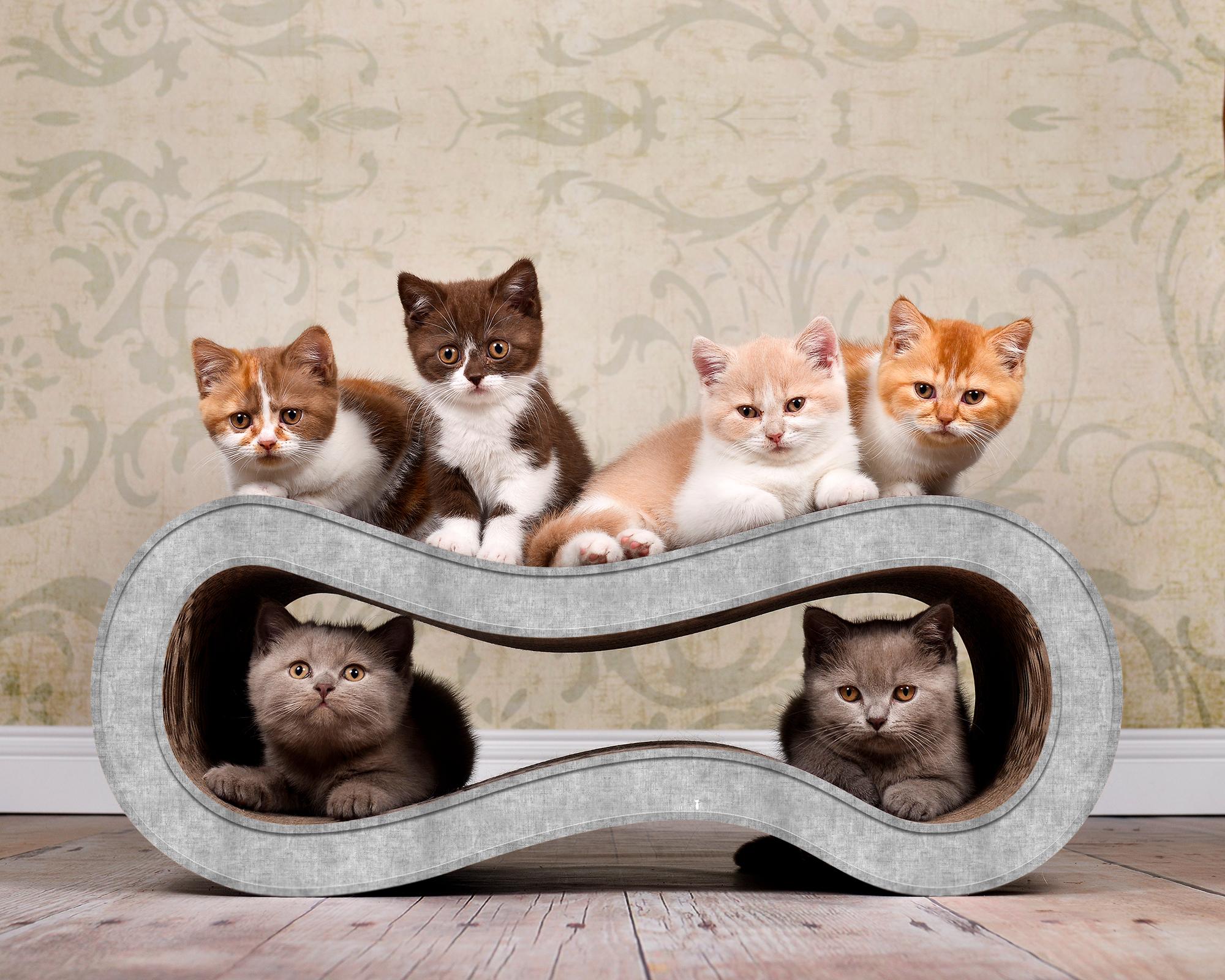 hellgraues Kratzmöbel für Katzen aus Wellpappe Singha M