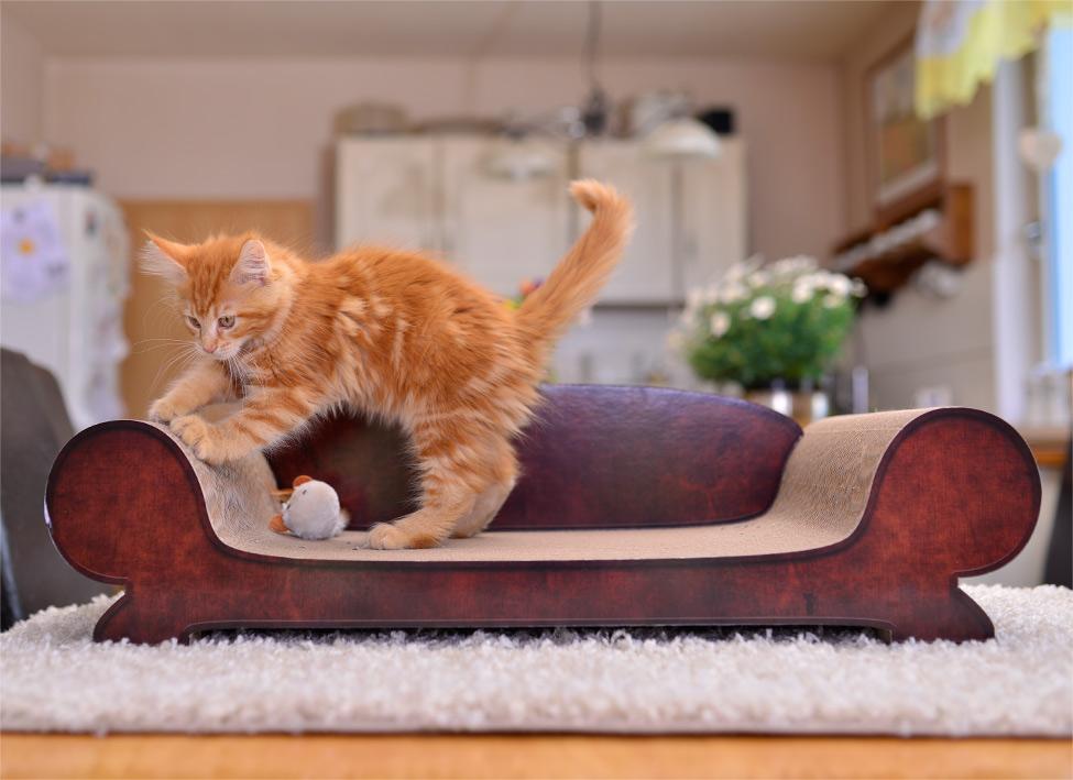 handgefertigte kratzm bel aus wellpappe f r katzen katzenm bel. Black Bedroom Furniture Sets. Home Design Ideas