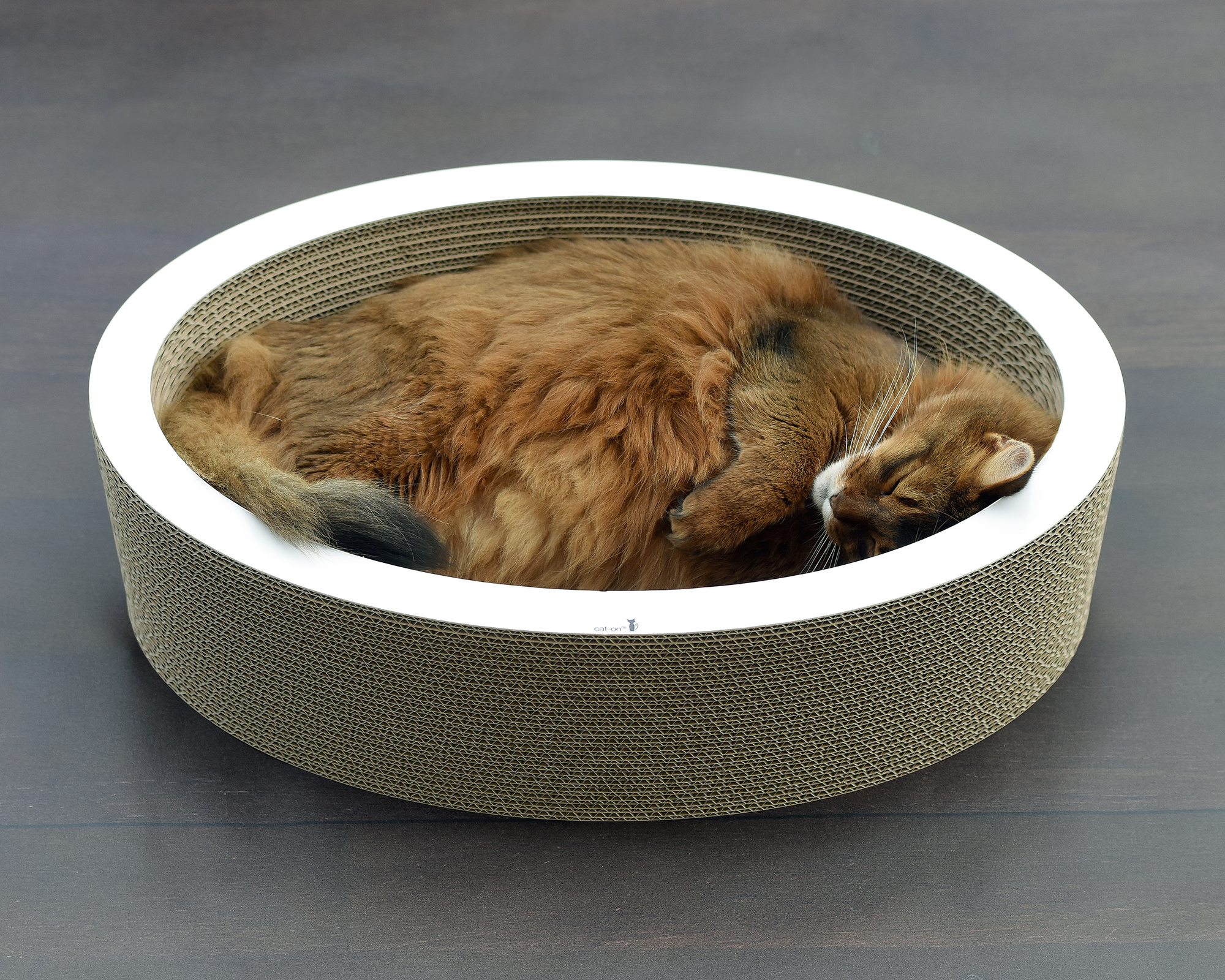 oval office for cats - Lovale - cardboard cat bed