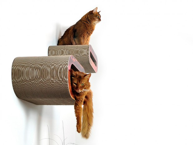 cat on wandkratzb ume cat walks modulare kletterl sung. Black Bedroom Furniture Sets. Home Design Ideas