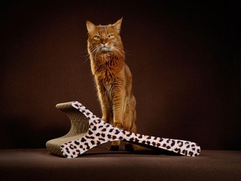 Kratzmöbel cat-on Feline 052