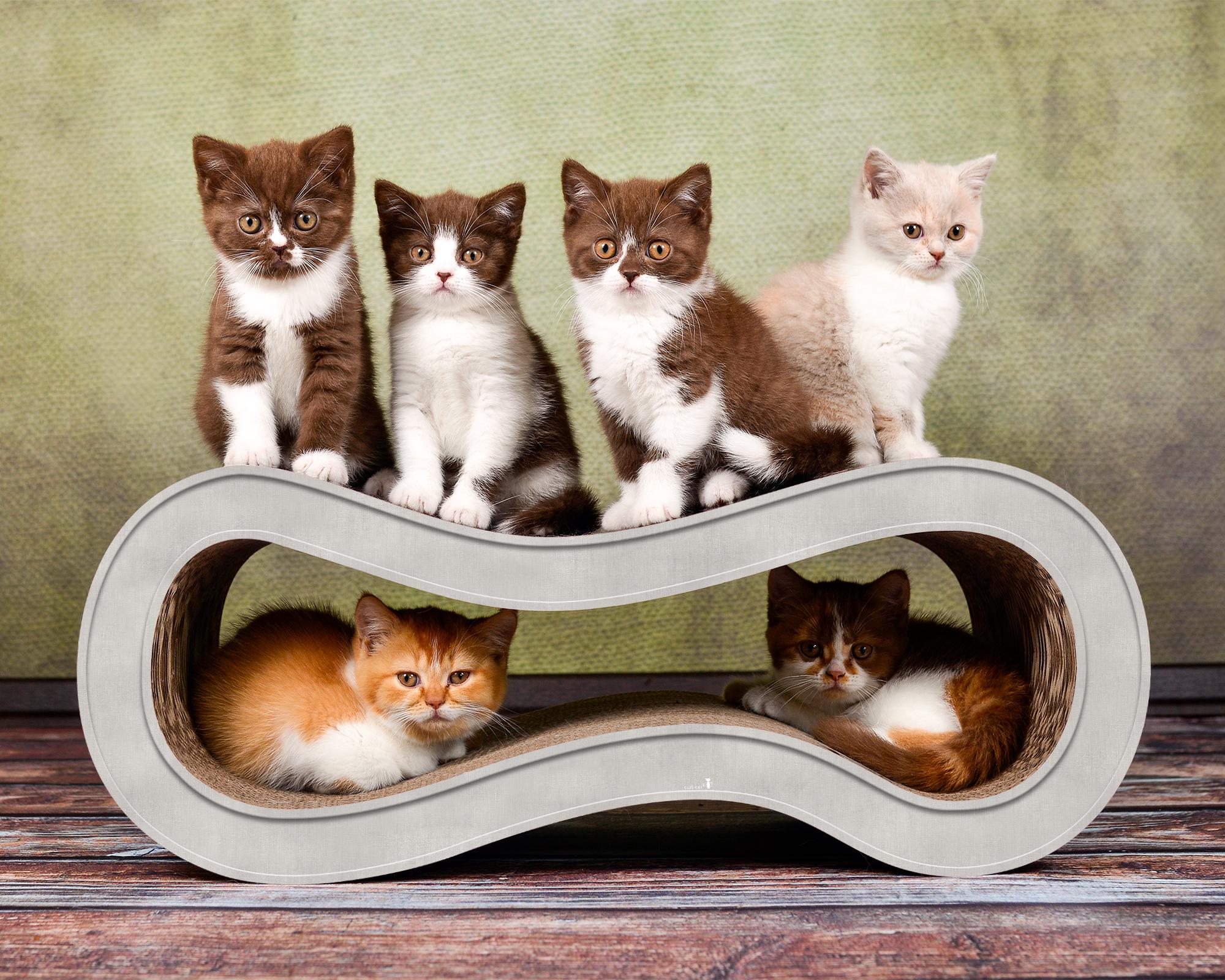 Katzenkratzmöbel aus Wellpappe Singha M in grau meliert