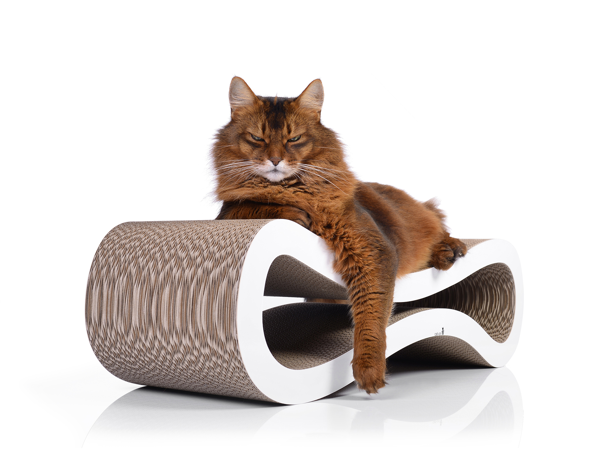 Cat Racer Design Kratzbaum