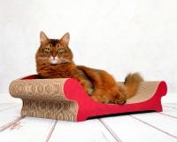 Katzenmoebel aus fsc-zertifizierter Wellpappe mit Papier-Applikation