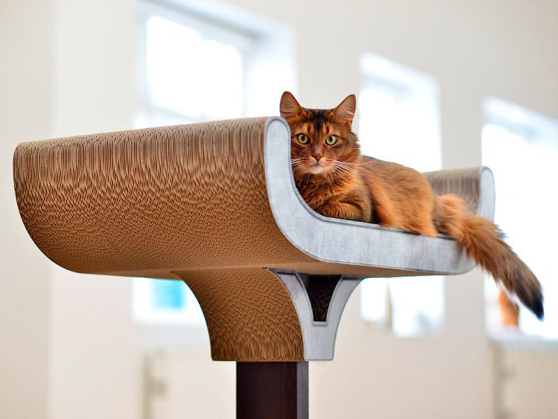 Kratzbaum Corbeille - cat-on auf hochwertigem Holz