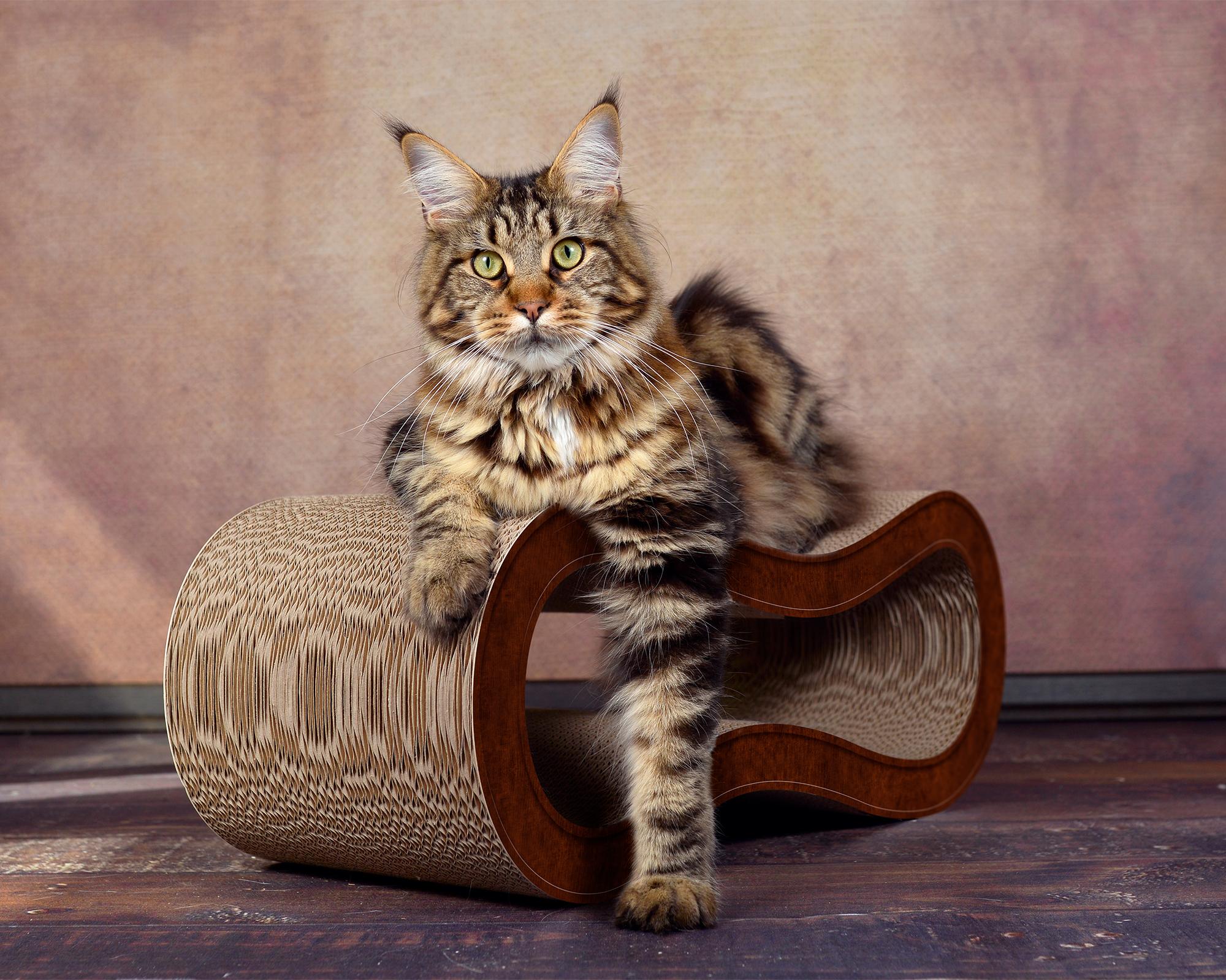 dunkelbraunes Katzenmöbel Singha M aus Kratzpappe - 003