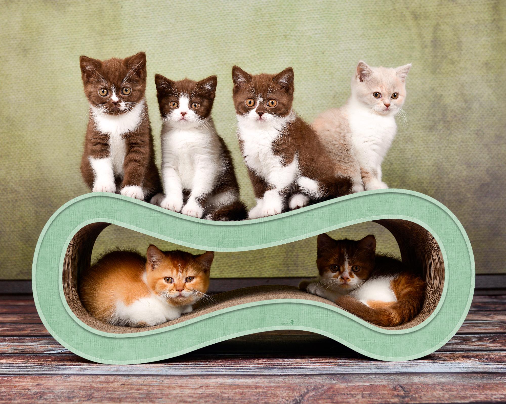 hell-grünes Katzenmöbel aus Kratzpappe Singha M Farbe 006h