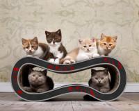 Vorschau: Design Kratzbaum Singha M für Katzen - Farbe: schwarz mit roten Blumen 007