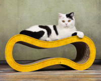 Yellow cat scratcher Singha M - Made in Germany - 004e