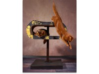 Design cat tree cat-on Arbor made of solid wood and design cardboard cat scratcher