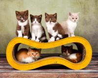 Vorschau: Katzenmöbel aus Karton & Kratzpappe Singha M - Farbe dunkelgelb