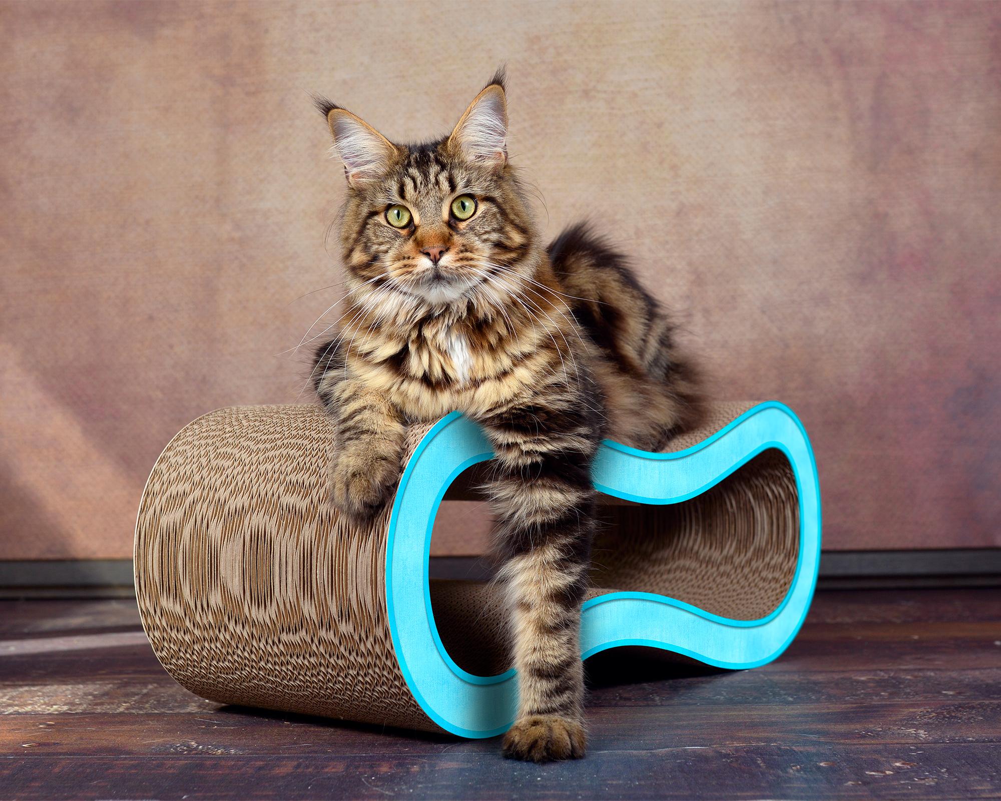 Pappkratzmöbel für Katzen Singha M - Farbe: hellblau 006d