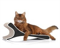 Preview: Feline cat scratcher