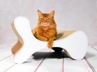 Vorschau: cat-on Molecular Fauteuil