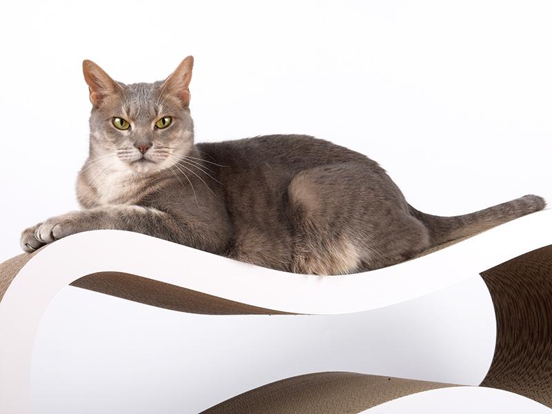 cat-on Singha L |Designer Kratzmöebel für Katzen