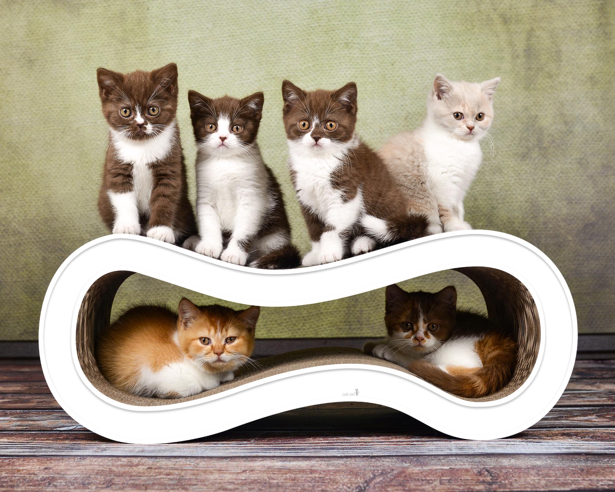 Multifunktionales Kratzbrett für Katzen Singha Medium in weiß
