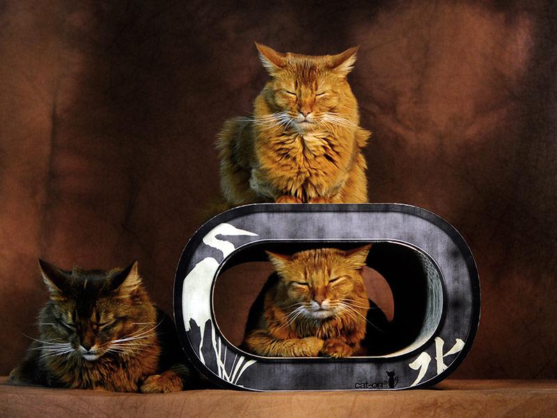 Le Tronc - Kratzmöbel für Katzen