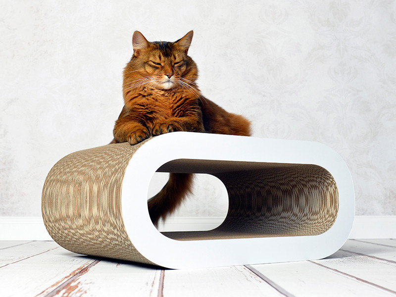 Le Maitre design cat tree