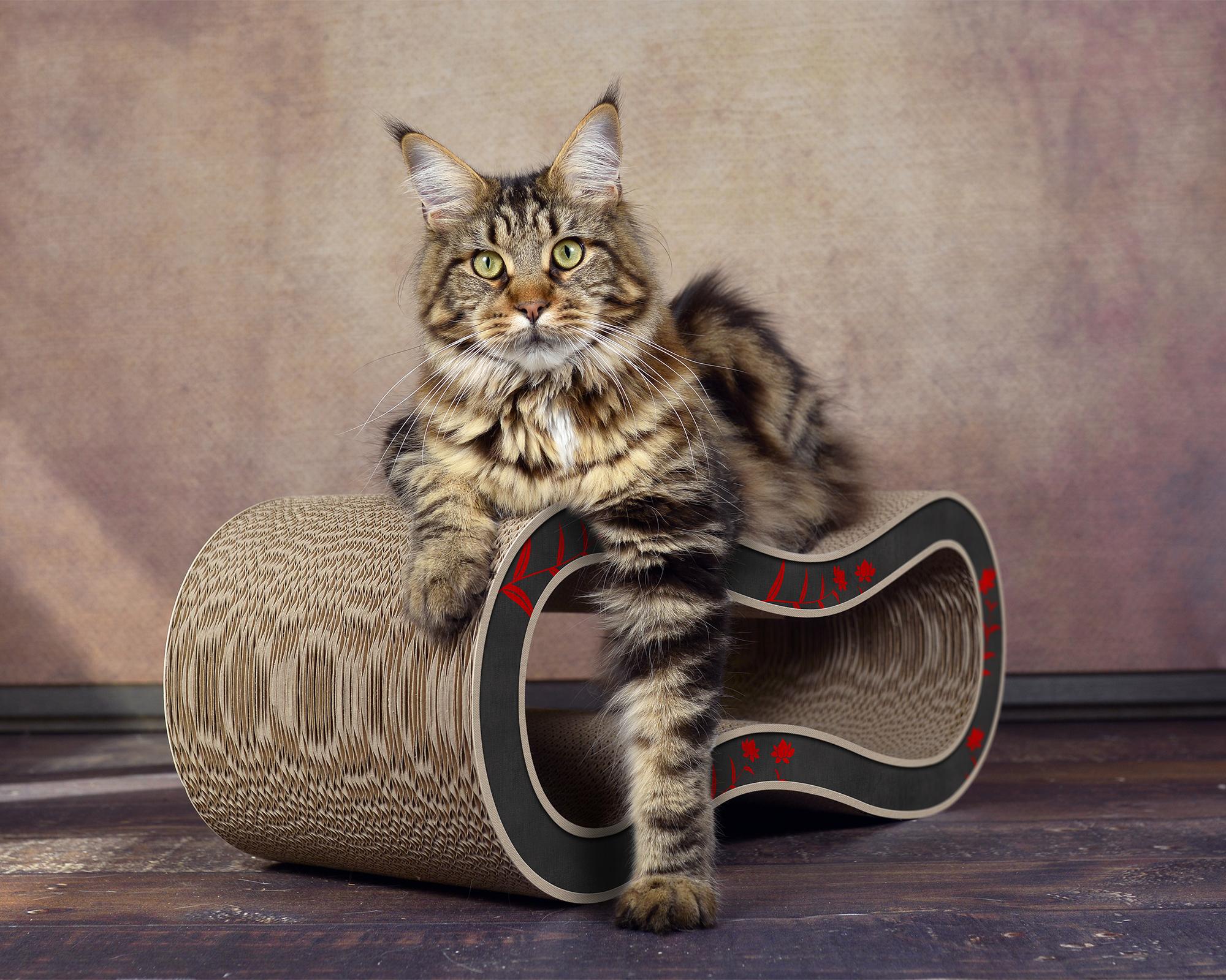 Design Katzenmöbel Made in Germany - Singha M - Farbe 008 - schwarz - rot - beige
