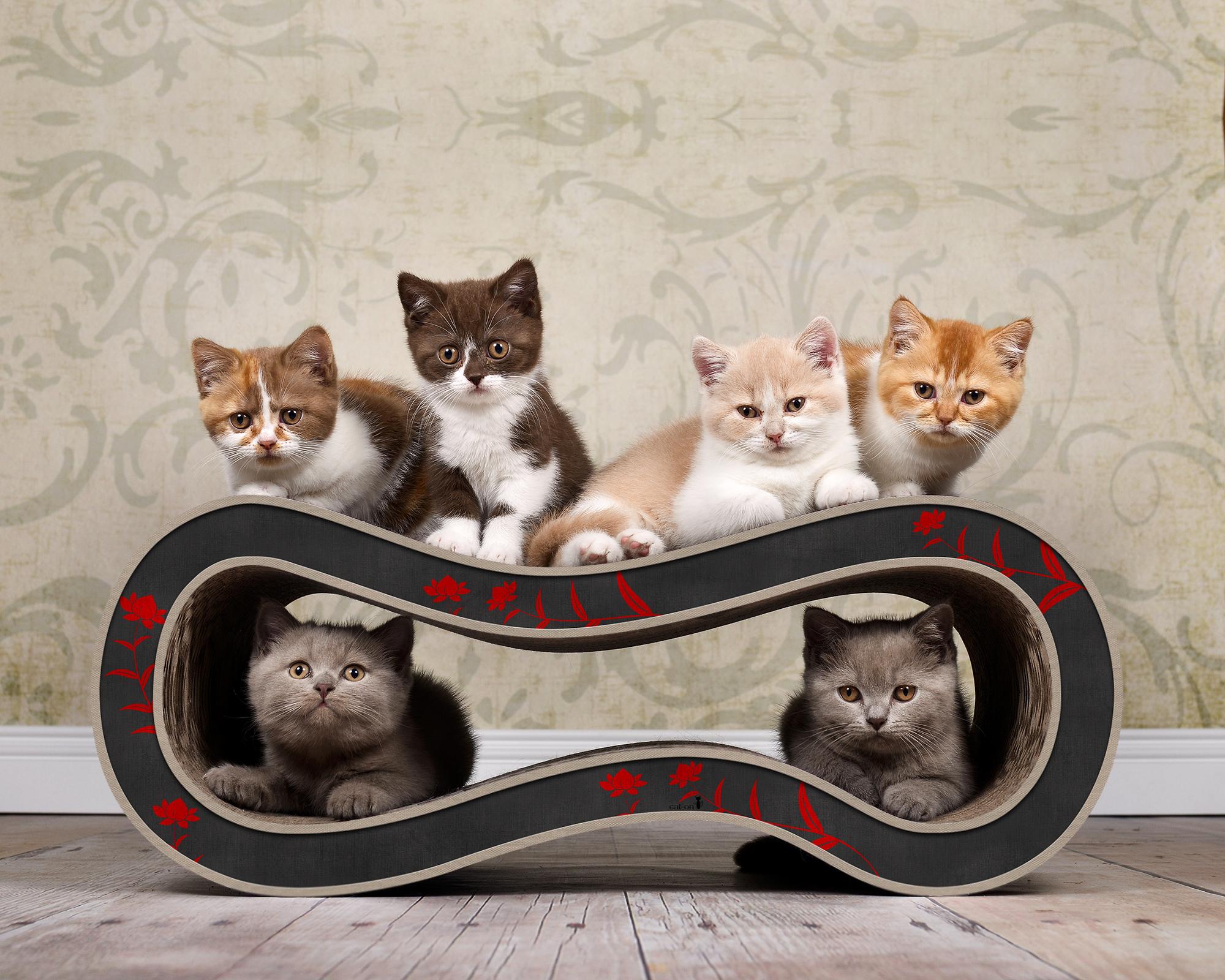 Design Katzenmöbel aus Wellpappe SIngha M - 008 schwarz,rot & beige
