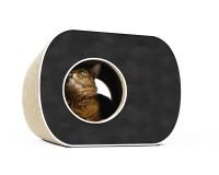 Vorschau: Brochhaus Junior Design Katzenmöbel