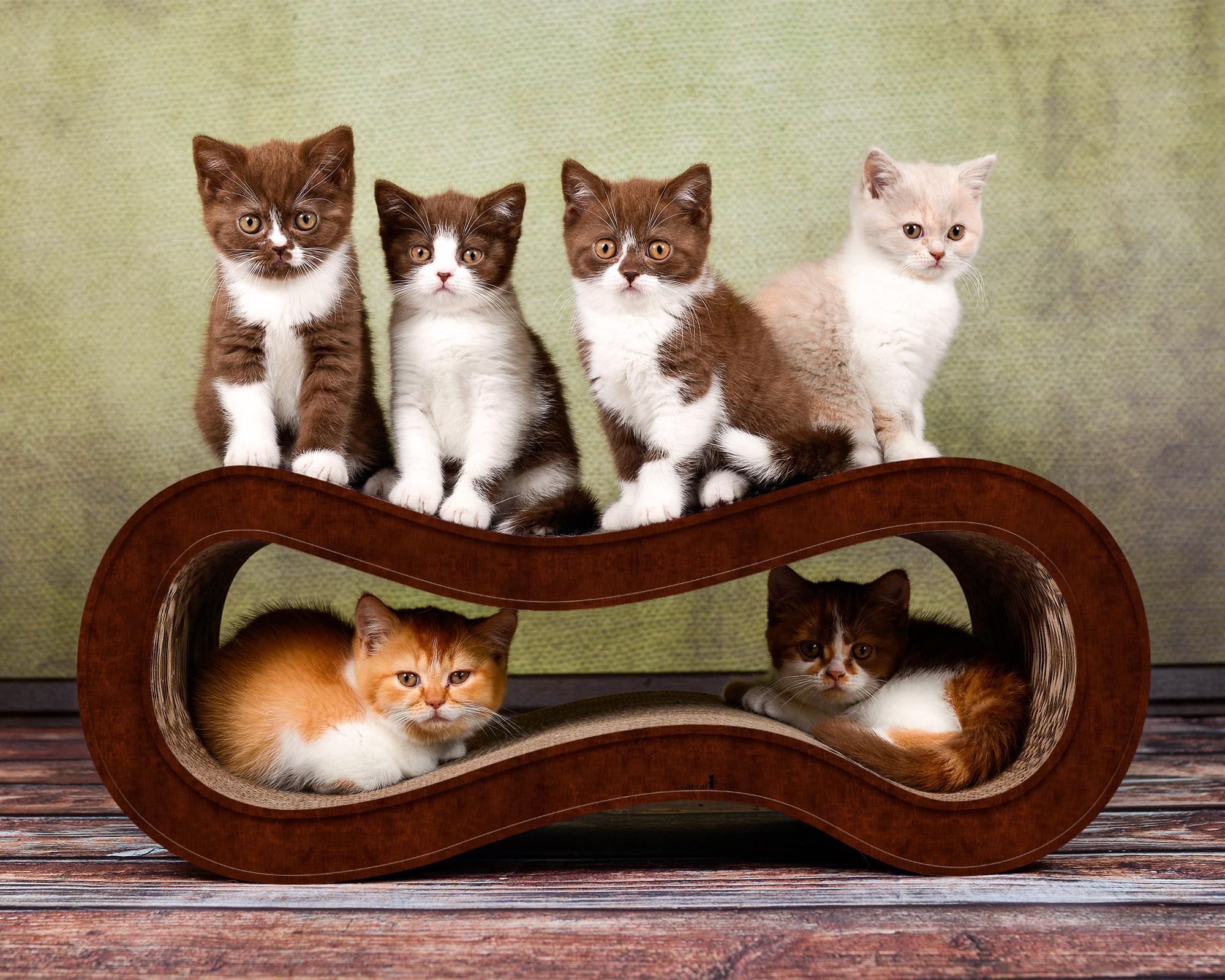 Dunkelbraune Kratzwelle für Katzen SIngha M