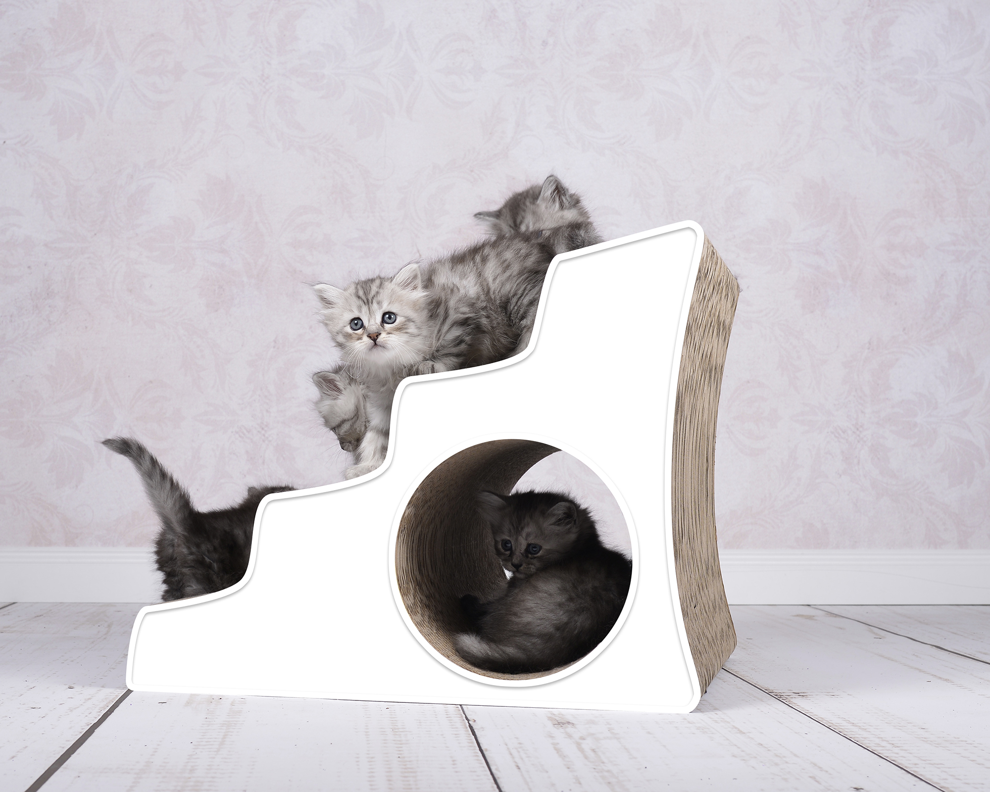 Lescalier Katzentreppe