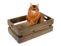 Katzenstiege L - Eichenholz, in Basalt geölt