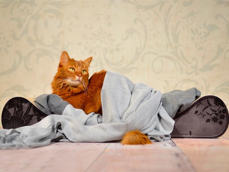 langer Divan für Katzen - Farbe: 013b