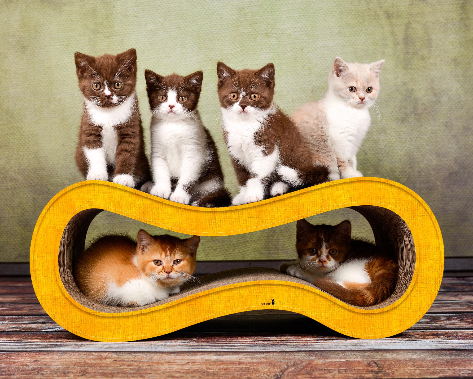 Katzenmöbel aus Karton & Kratzpappe Singha M - Farbe dunkelgelb