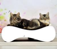 Vorschau: Kratzwelle für Katzen Le Ver S - Farbe: 000