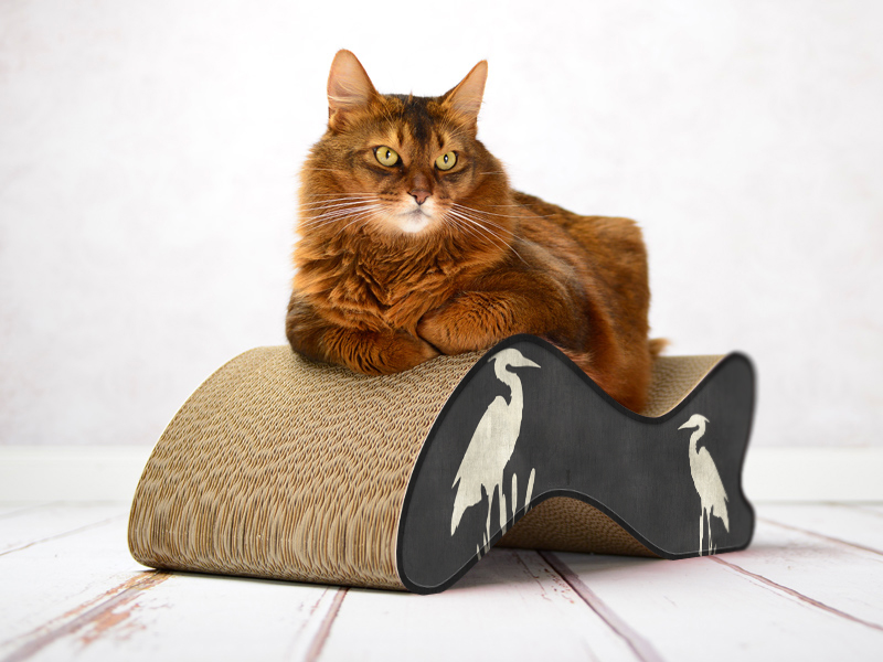 cat-on Kabou | Kratzmöbel aus Wellpappe