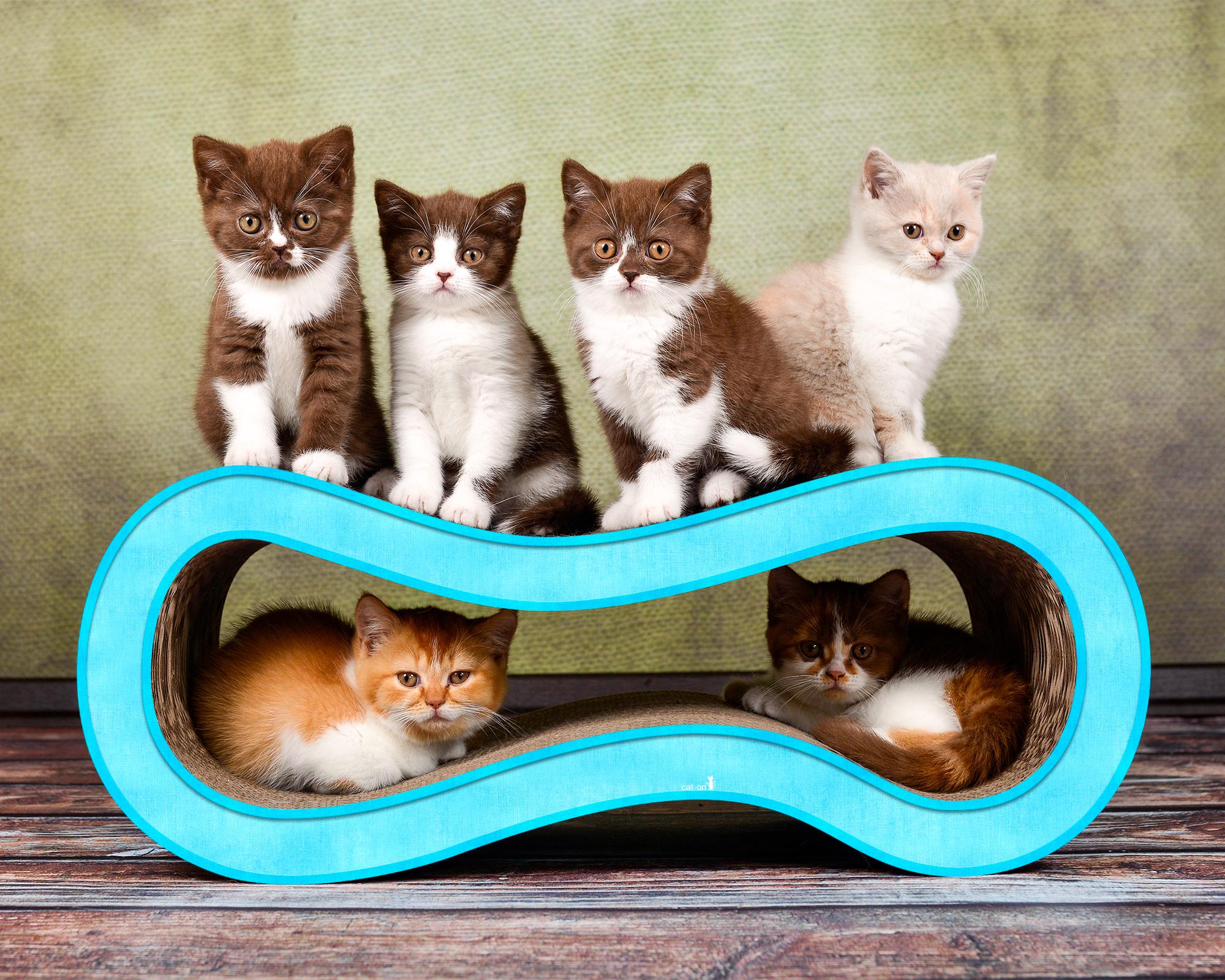 Spielmöbel Kratzbaum für Katzen Singha M in hellblau 006d