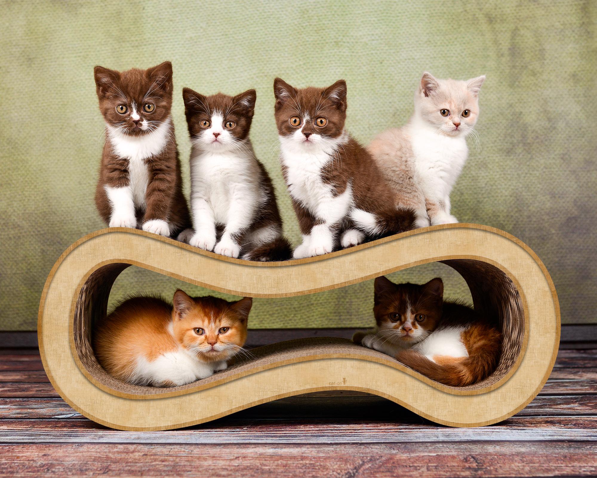 Katzen-Kratzmöbel aus Wellpappe Singha L in der Farbe 005 beige