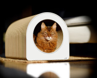 Vorschau: cat-on Le Tube L