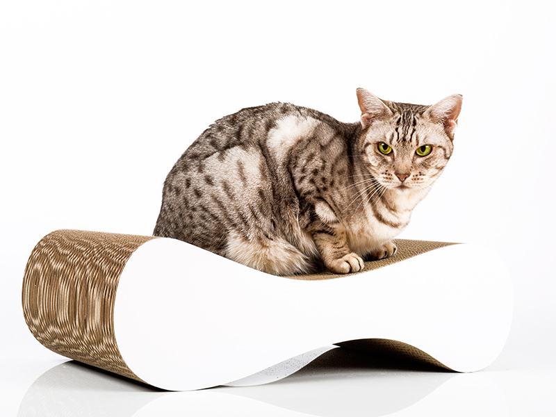 Kratzmöbel cat-on Le Ver S in weiß