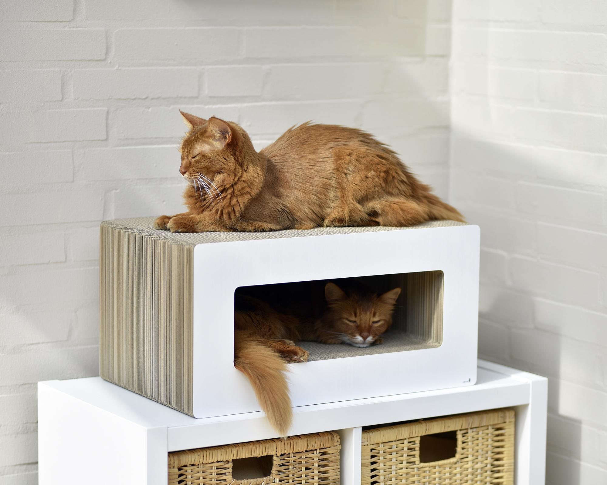 Weisses Design Kratzmöbel für Katzen Loop - Handmade in Germany