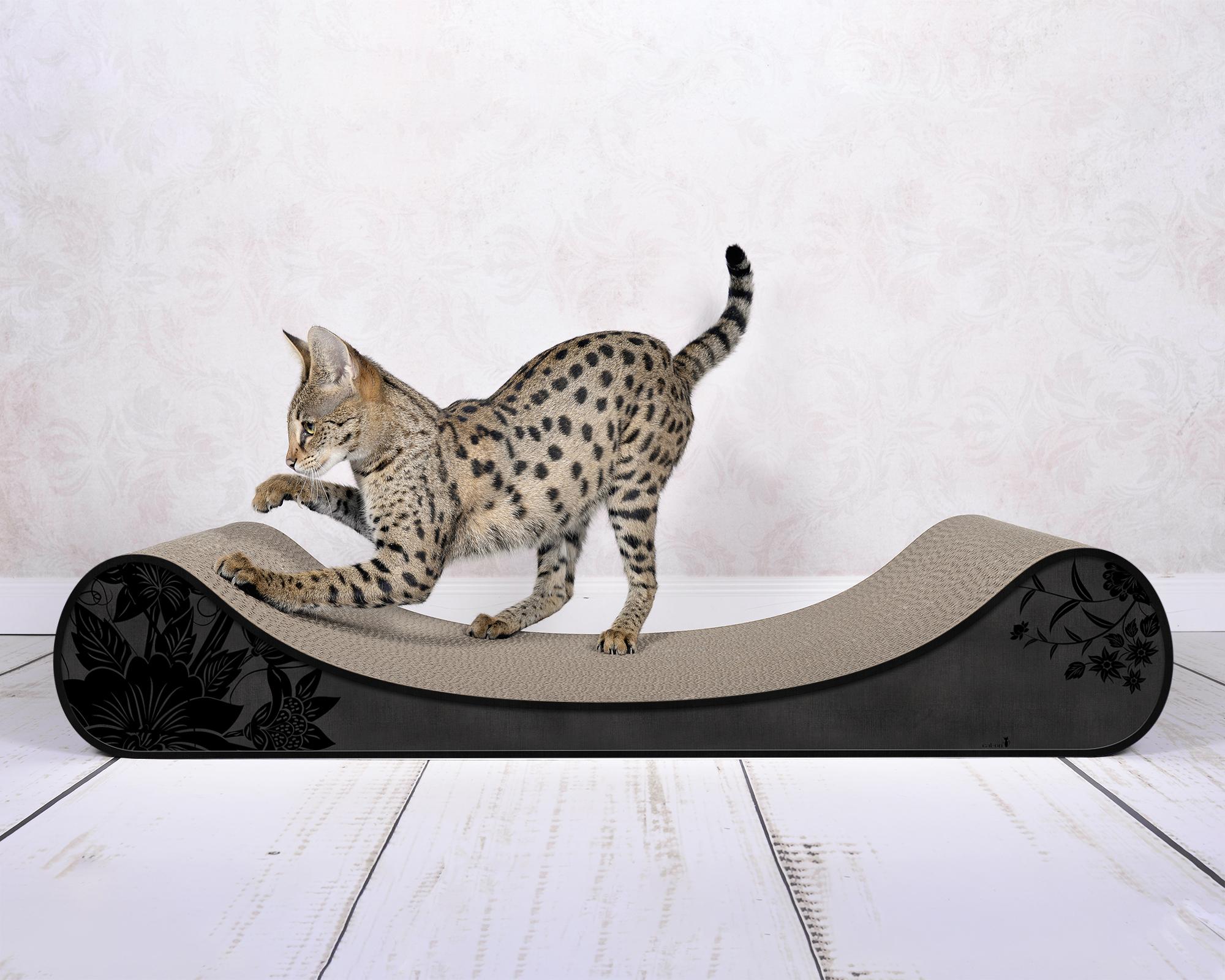 Le Divan Katzenliege