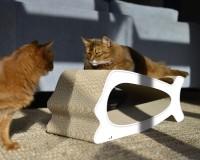 Weißes Design Kratzmöbel für Katzen La Baleine - Made in Germany
