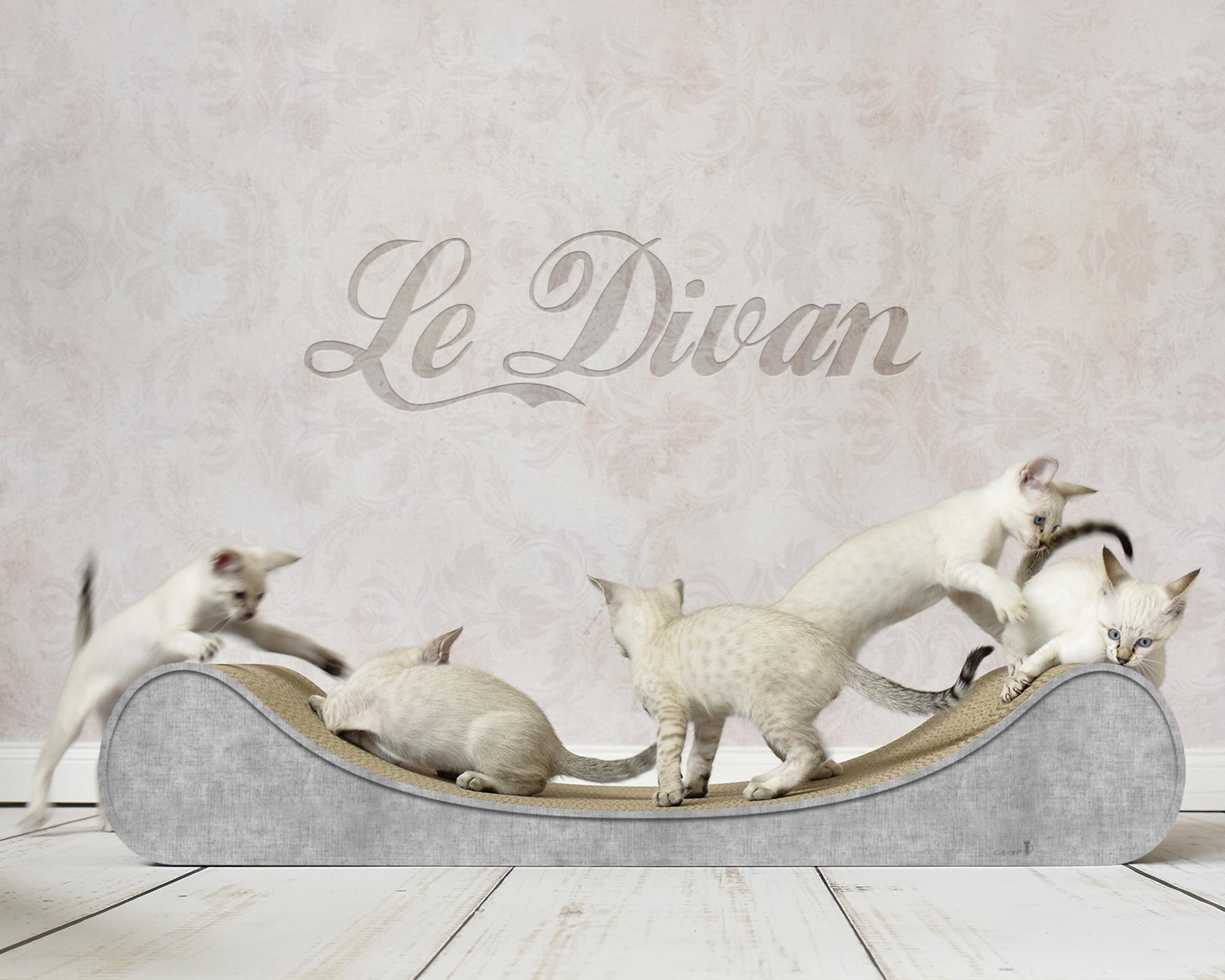 Le Divan cat lounge