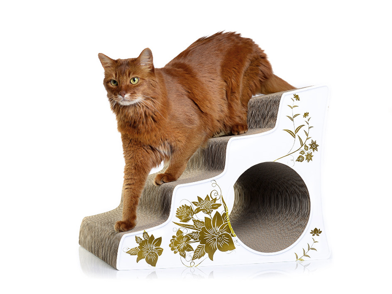 Ataxia stairs for disabled cats