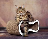 Vorschau: Design Katzenmöbel Kratzbaum Singha M - Asia graue Blumen auf weiß