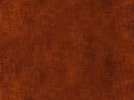 0002-Bruin