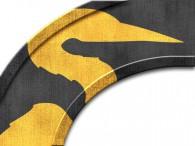 0011-Azië gouden kraanvogel op zwart