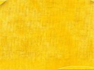 0200-RAL 1007 narcissen geel